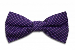 Polyester Pre-Tied Purple Dickie Bow Tie with Diagonal Stripe Design